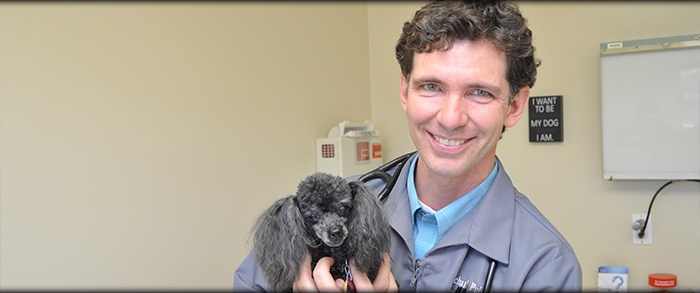 Timberline Animal Hospital offers a wide range of Veterinary Services