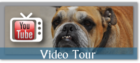 Check out our Video Tour